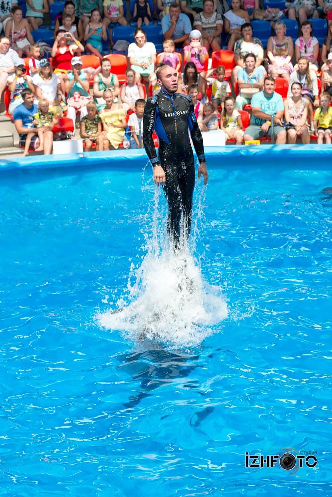 Дельфинарий в Сочи Фото