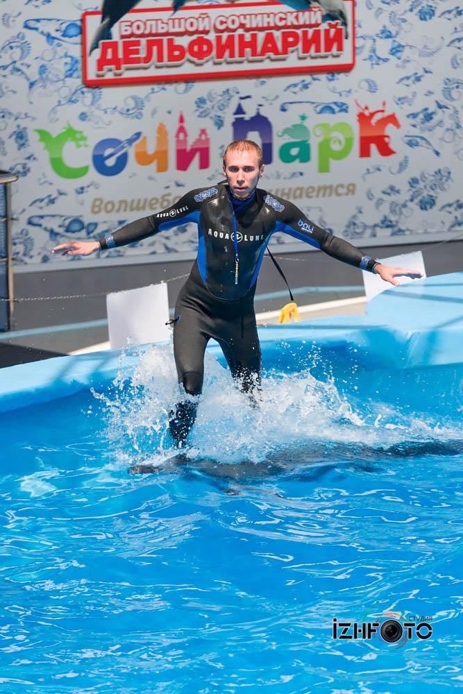 Сочи дельфинарий