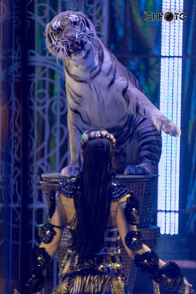 Цирк Гии Эрадзе Фото