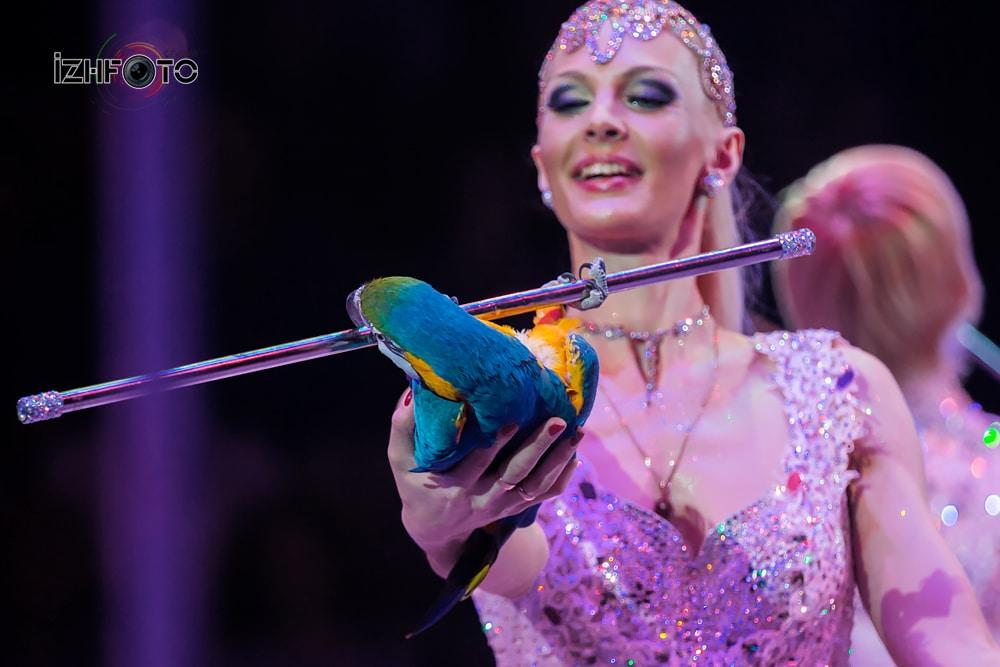 «Лиры», дрессированные попугаи, п/р Александра Оноприенко, Россия