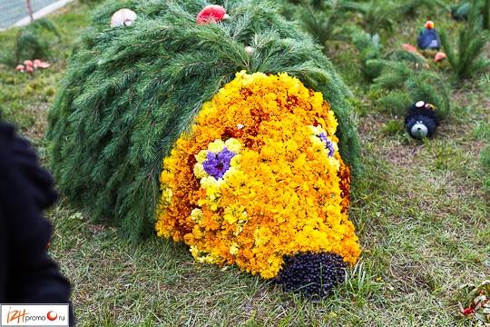 Праздник цветов в Ижевске