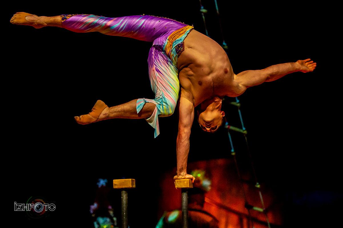 Алегрия Цирк Дю Солей