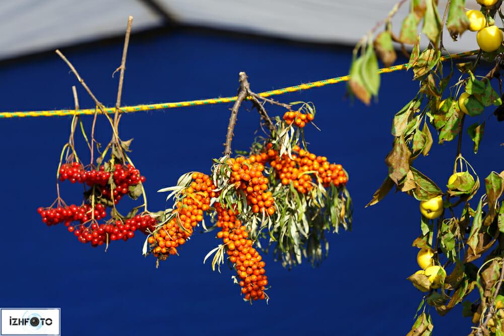 Фотографии с праздника цветов в Ижевске