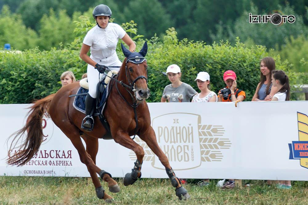 Кубок по конному спорту Ижевск 2016