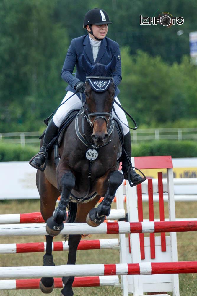 Конный спорт 2016