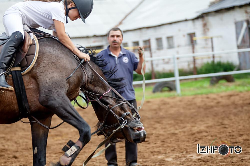 Конный спорт в Ижевске