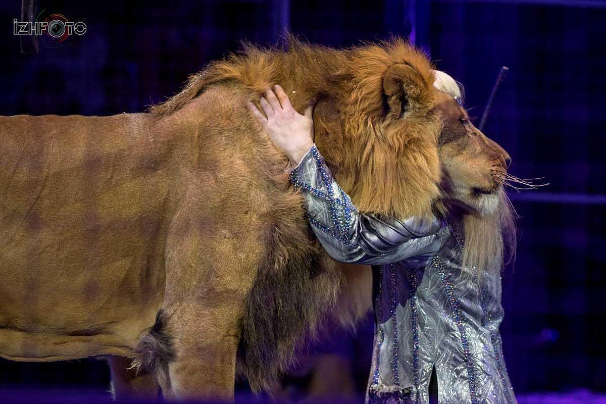 Аттракцион В садах Ривенделла (В Созвездии Льва) Россия