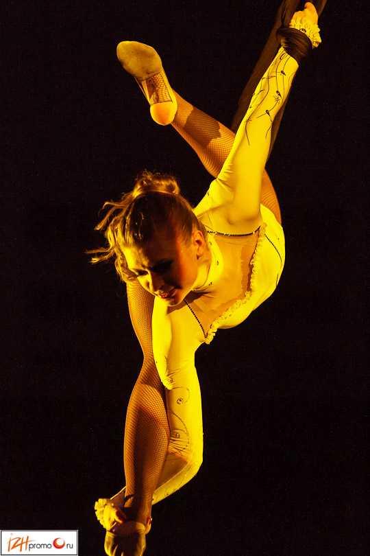 Воздушная гимнастика в петлях О. Маслова, Парад звезд