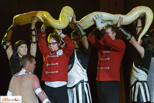 Экзотик-шоу в Ижевском цирке