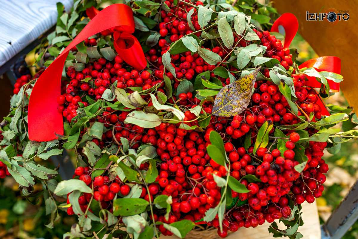 Фотографии с праздника осени в Воткинске