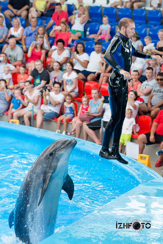 Сочи Парк дельфинарий