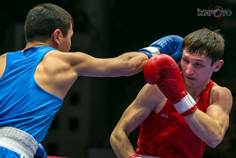 Фотографии боксеров