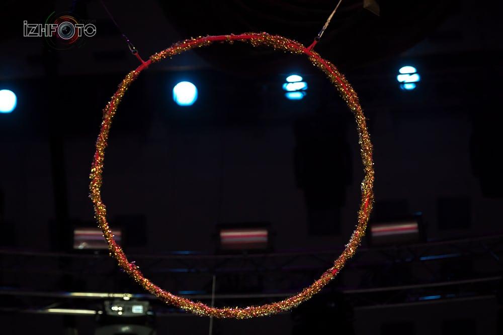 Выступления в Ижевском цирке Фото
