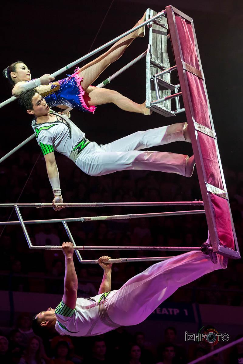 Воздушные акробаты в цирке