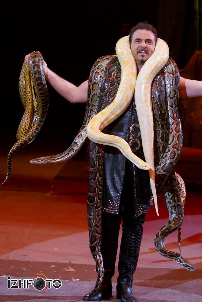 Дрессированные змеи в цирке Фото