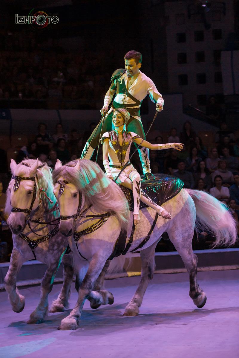 Трюки на лошадях Фото
