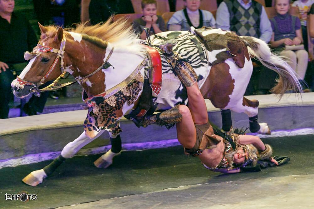 Фото королевского цирка Пять Континентов