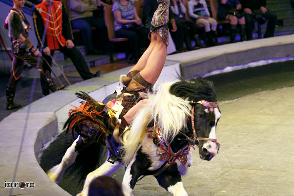 circus-izhevsk003-7