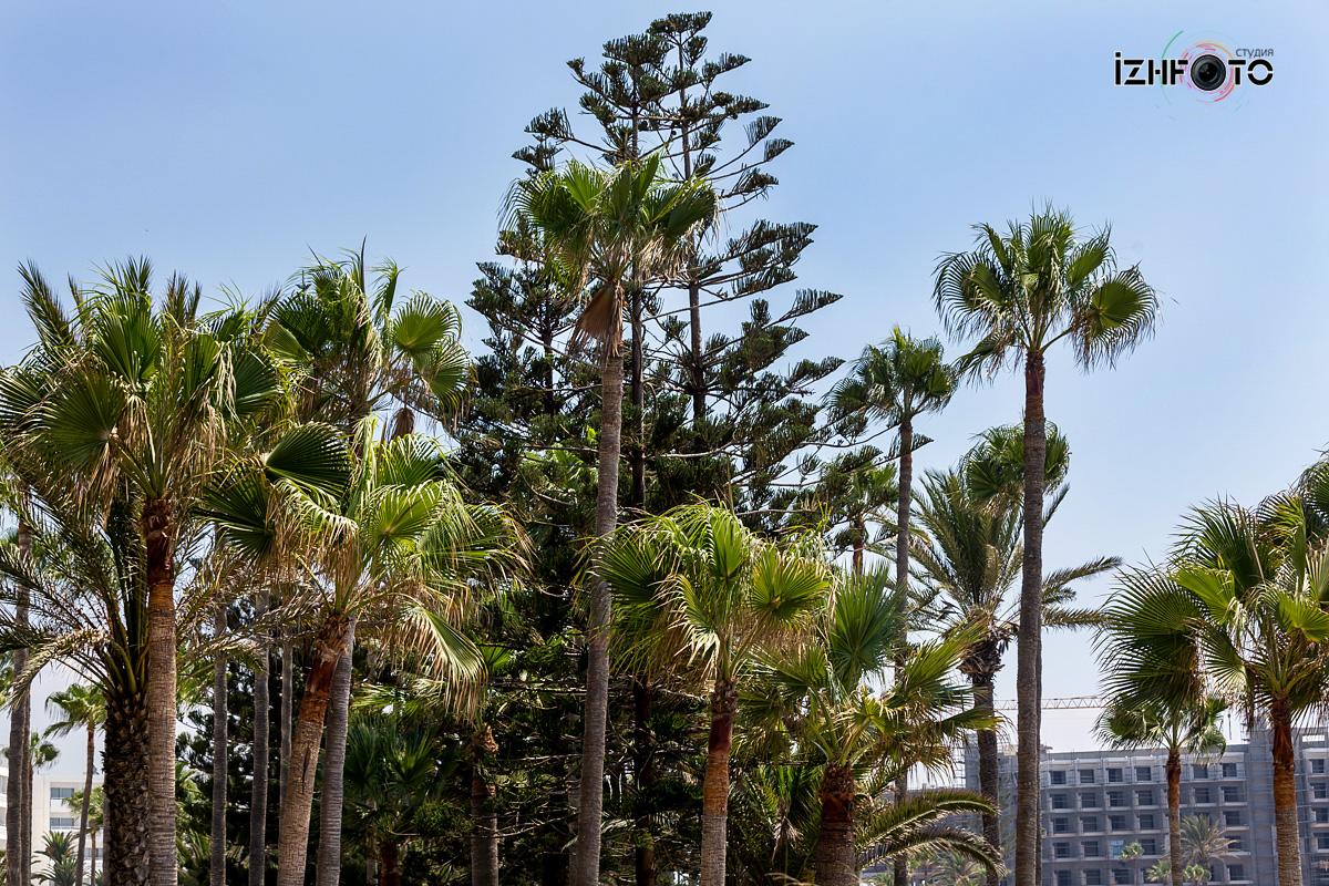 Пляж Nissi beach Кипр Фото