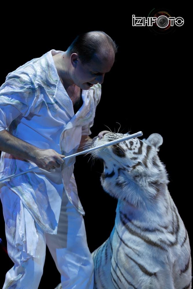Цирк Сафари