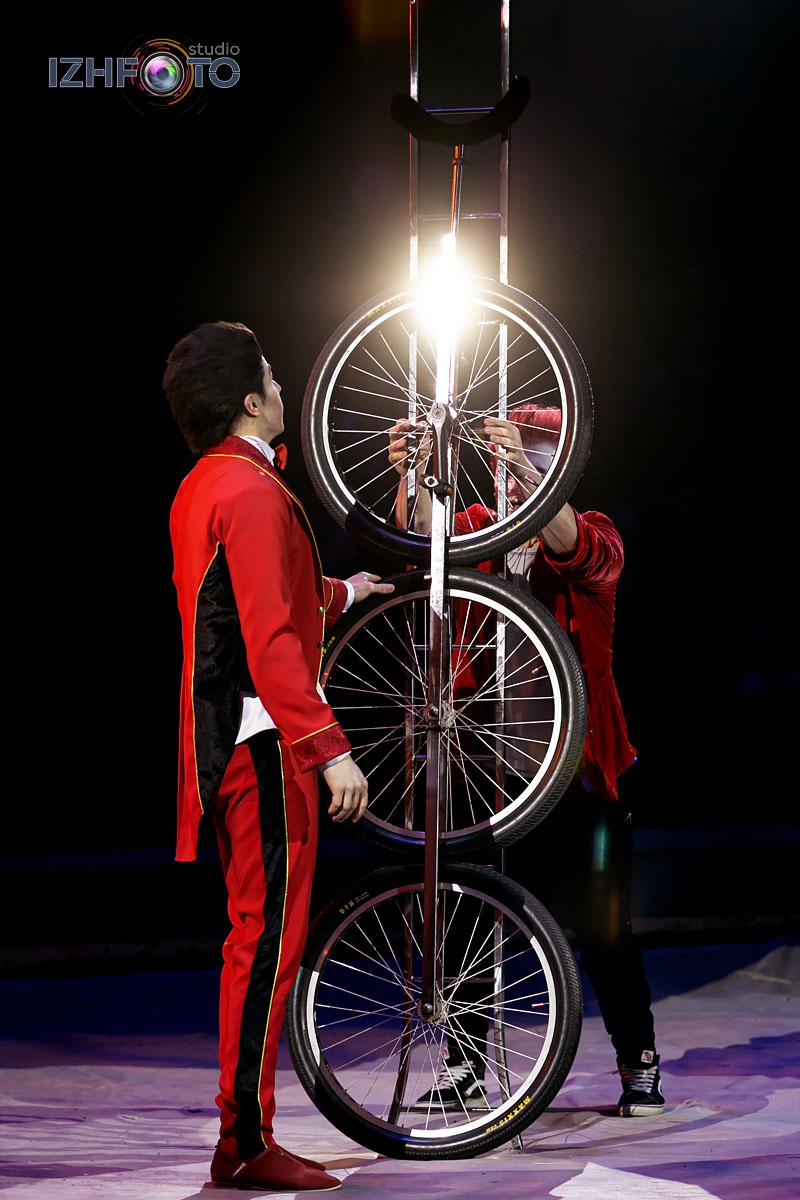 Новогодняя сказка в цирке