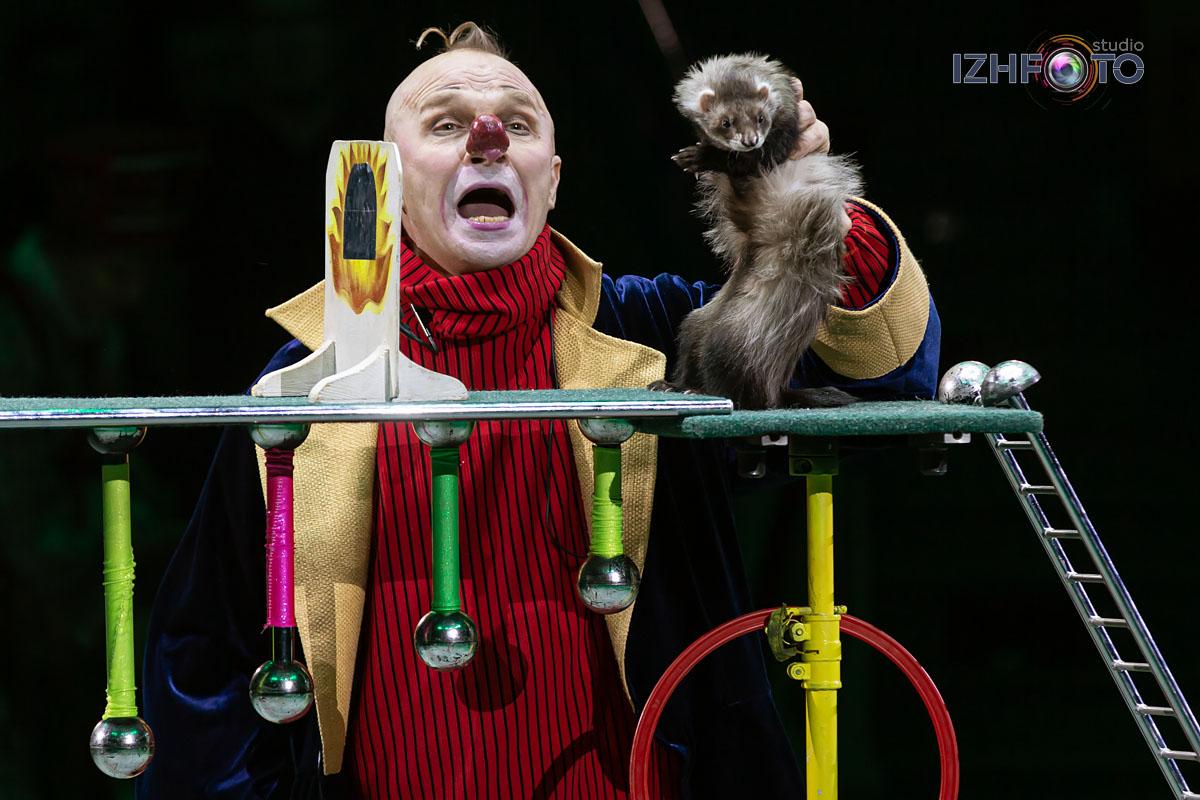 Дед Мороз и Вреднюга в цирке