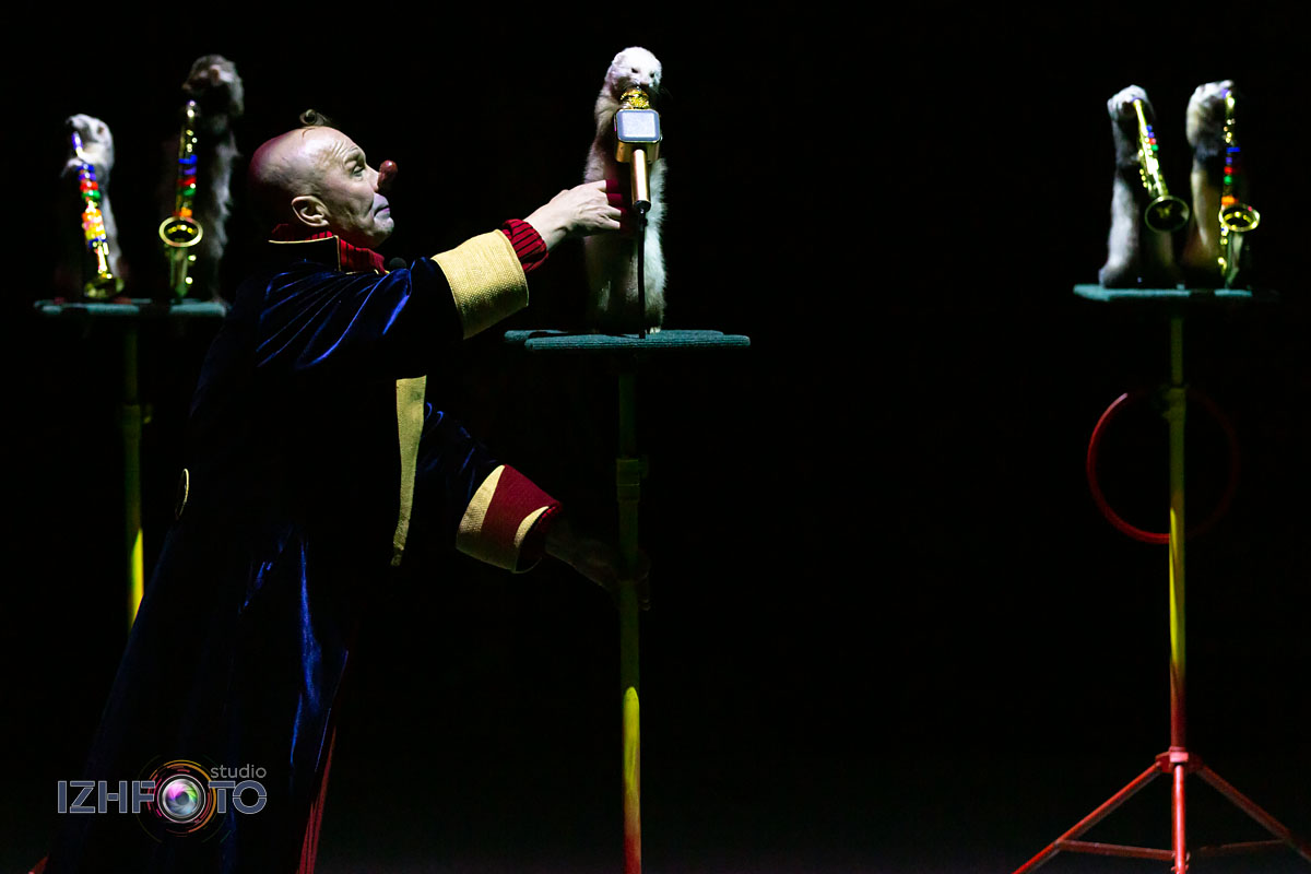 Ёлка в цирке 2020
