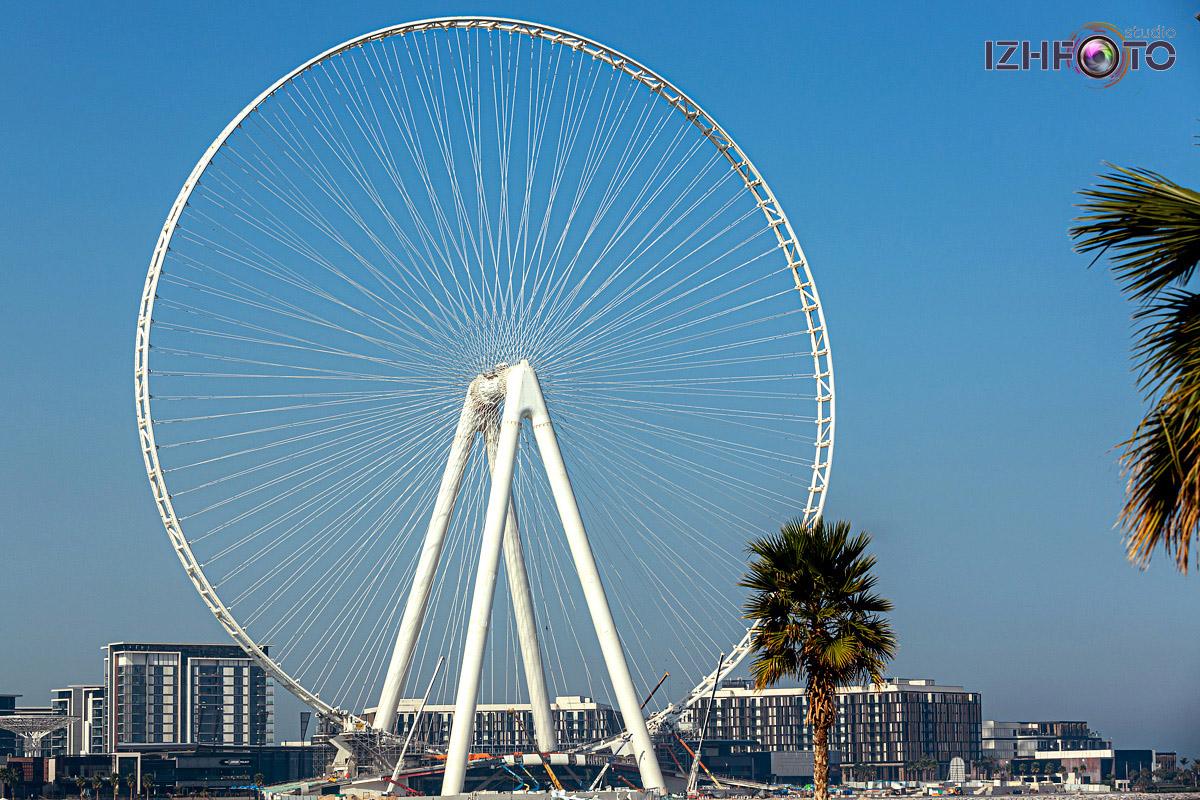 Фото из прогулок по Дубаю