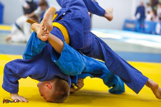 Восьмой всероссийский турнир по дзюдо имени Илфата Закирова