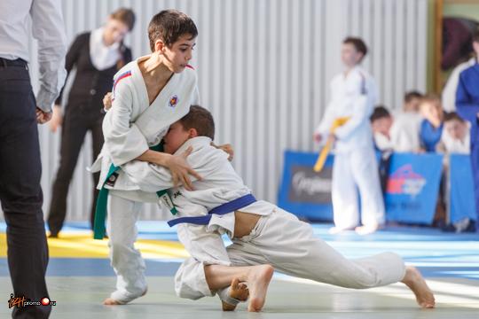 Секции по дзюдо в Ижевске
