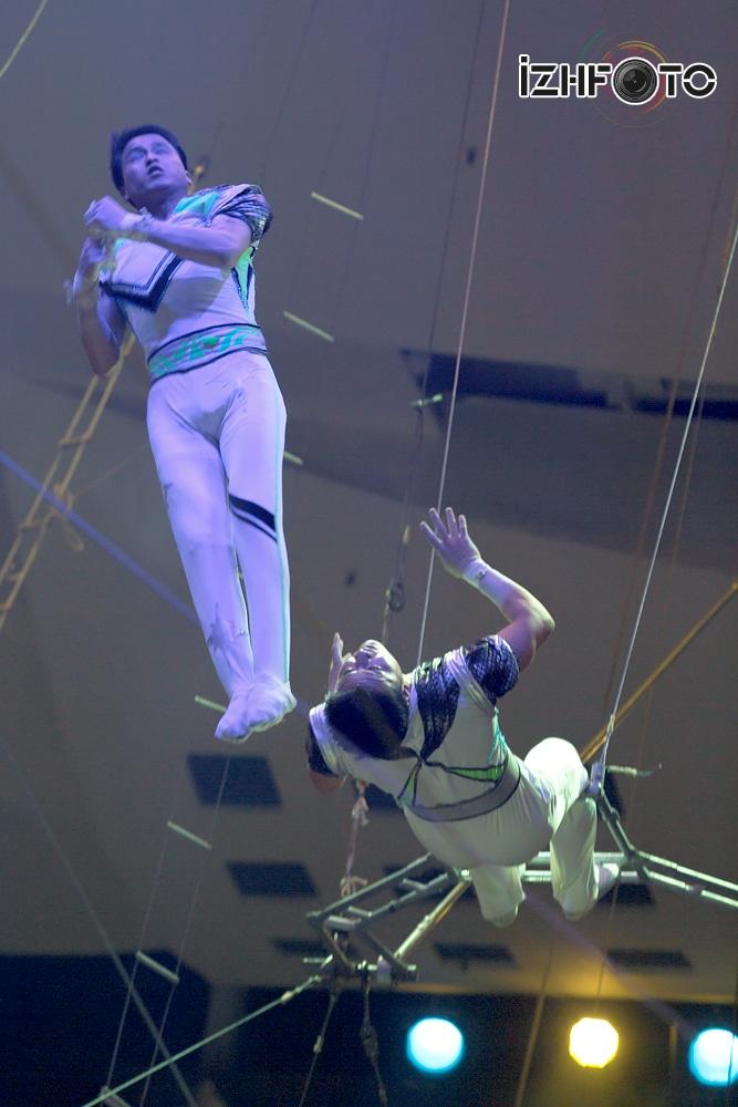 Под куполом цирка