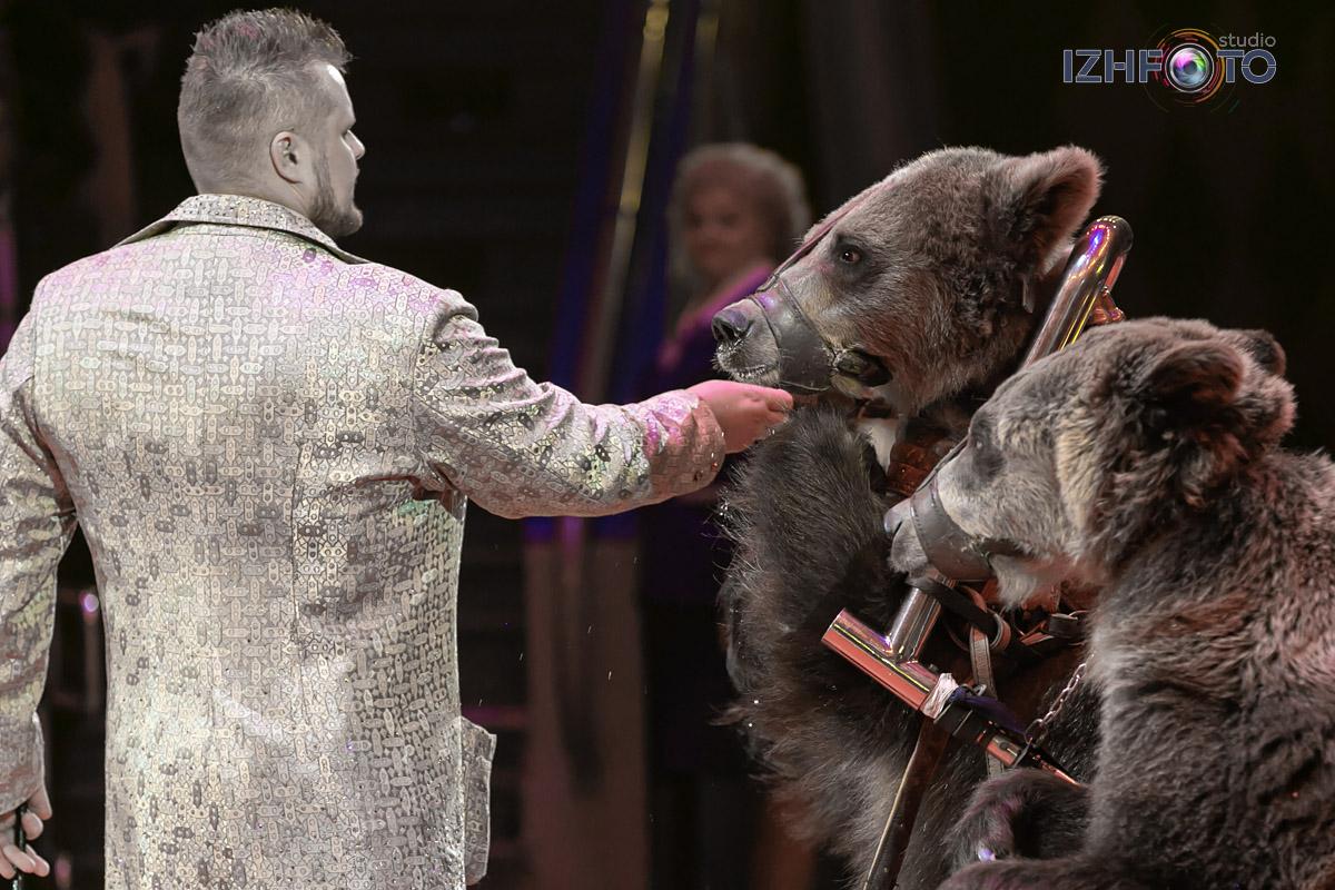 Медвежий цирк Филатовых Фото