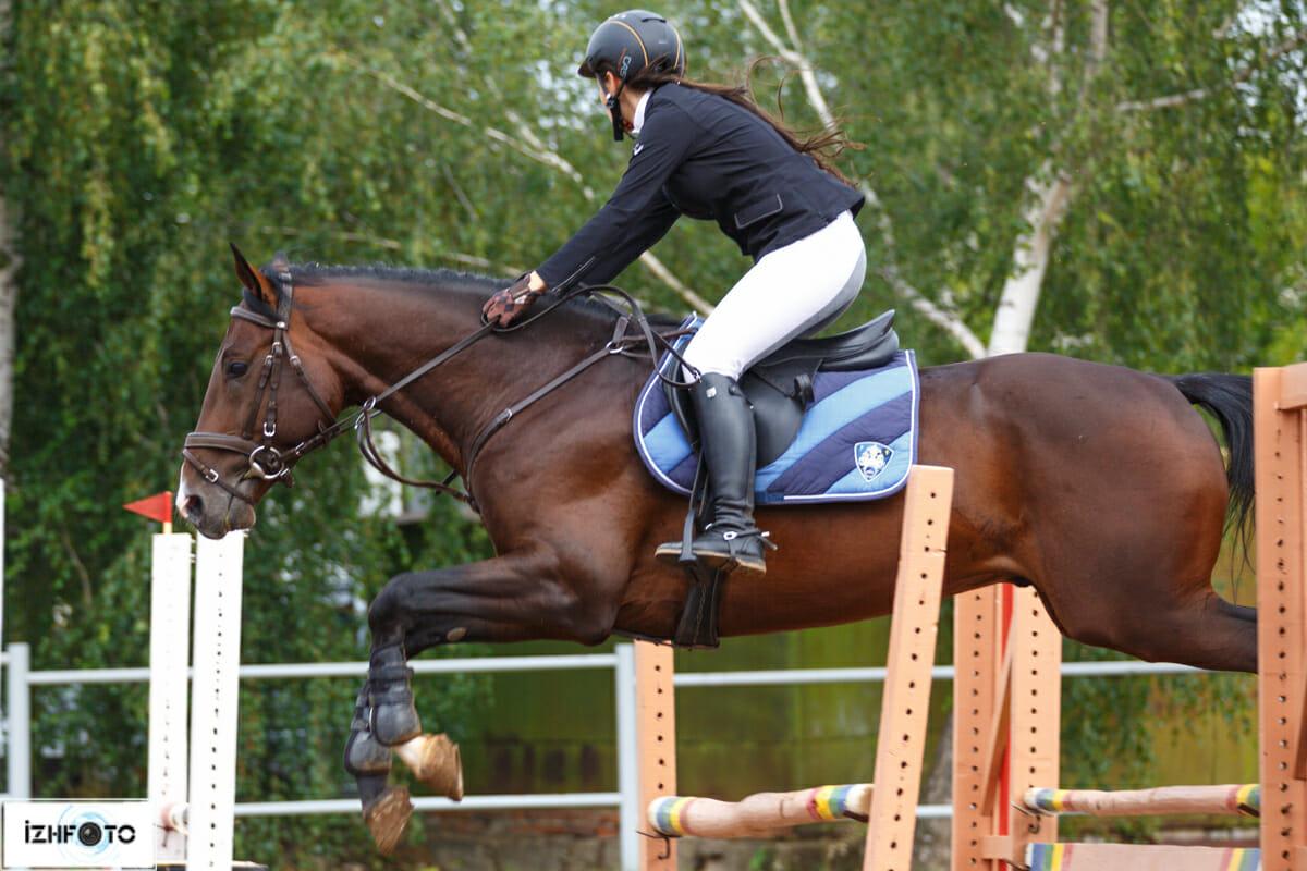 Фото лошадей на спортивных соревнованиях