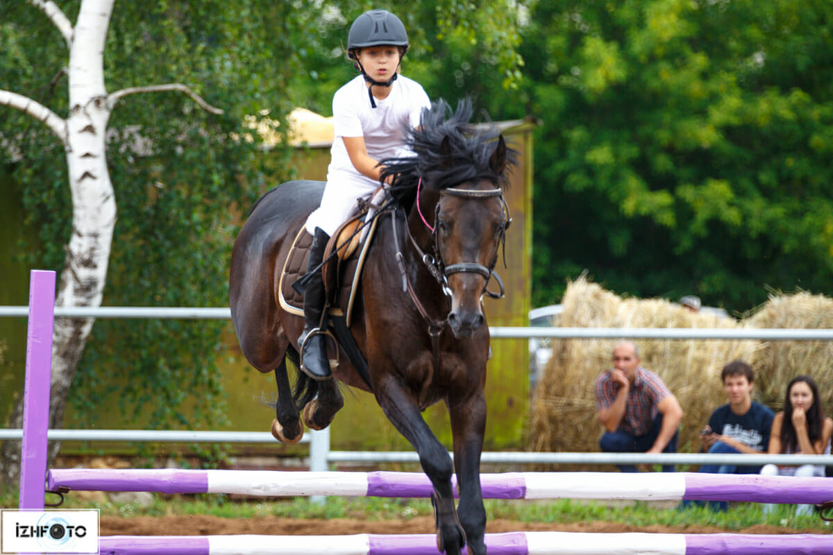 Выездка на лошадях Фото