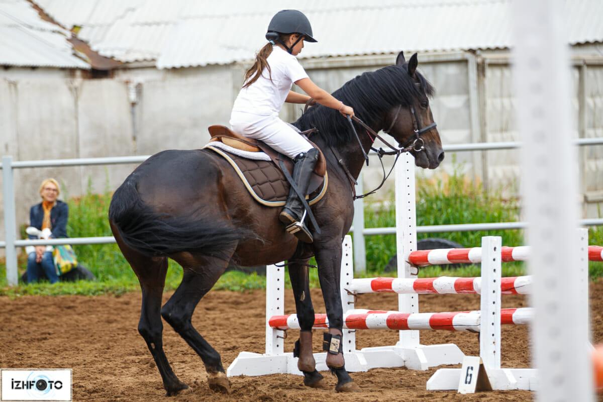 Занятия конным спортом на ипподроме Ижевска