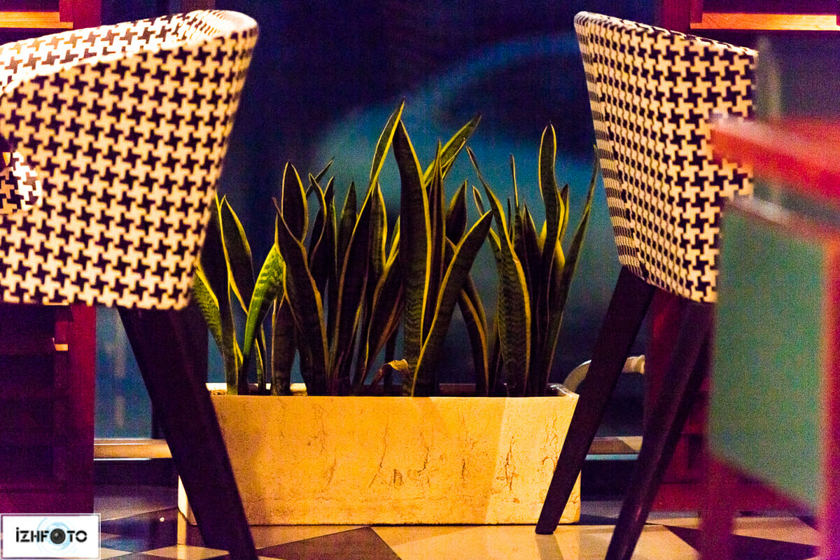 Кафе Wong Ижевс, фото интерьеров
