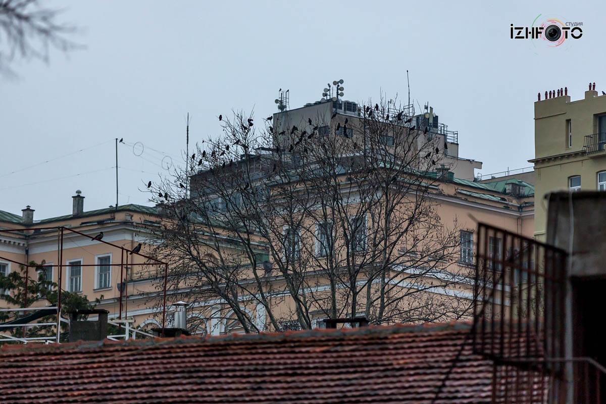 Фотографии улиц в Стамбуле
