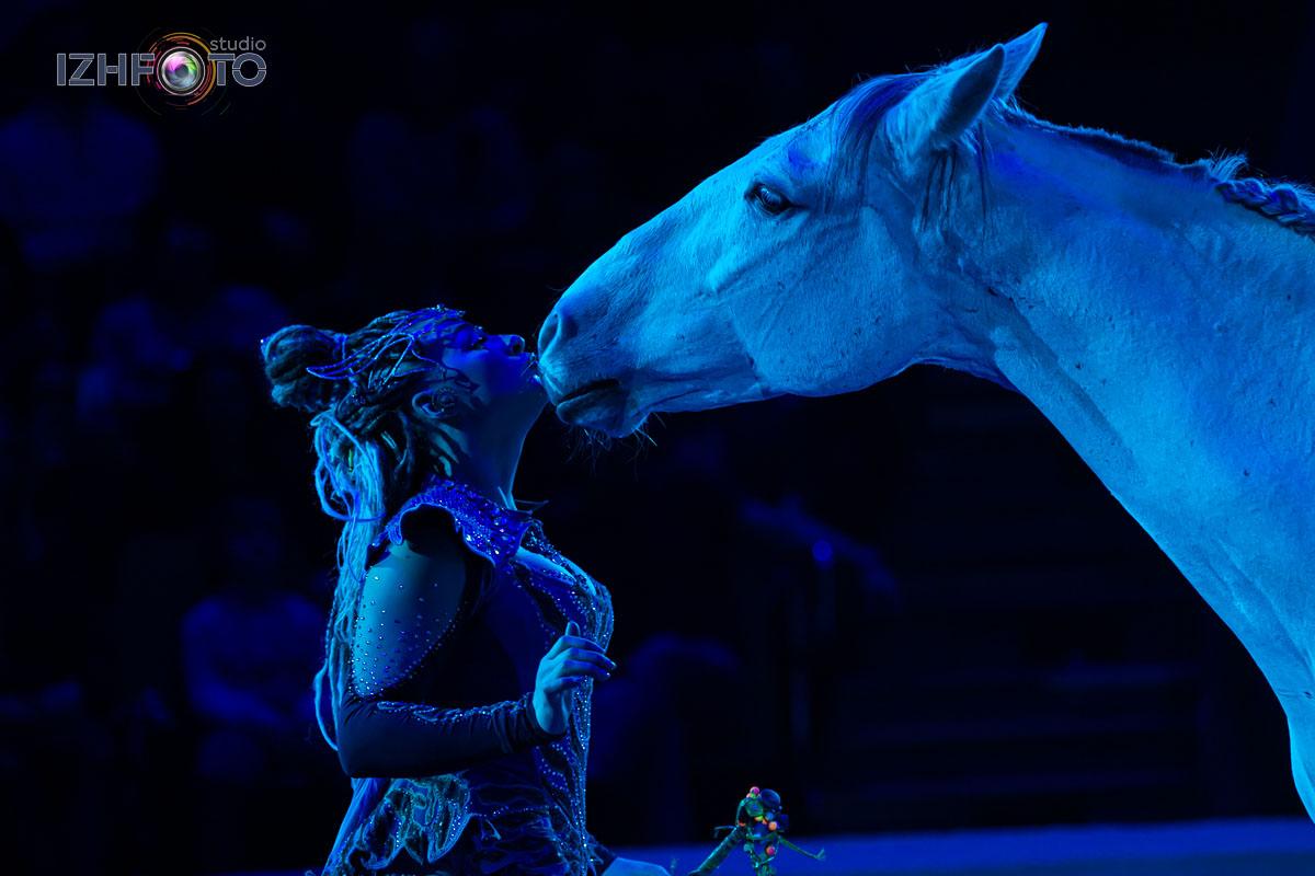 Анастасия Стыкан «Эльфория. Свобода лошадей»