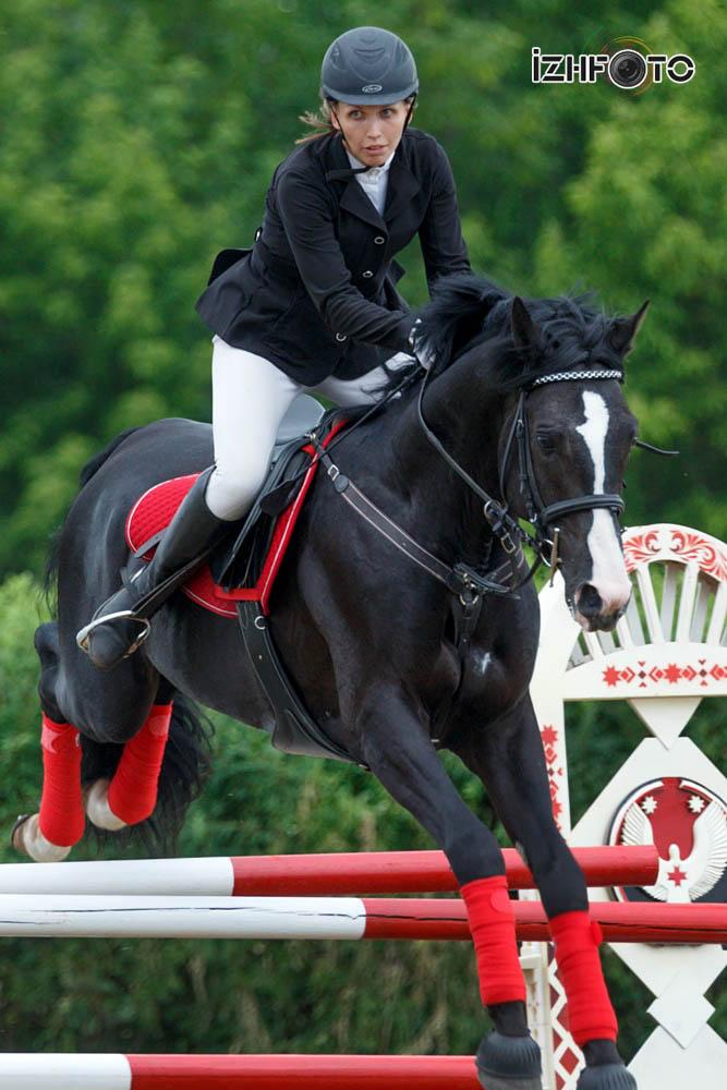 Кубок конному спорту