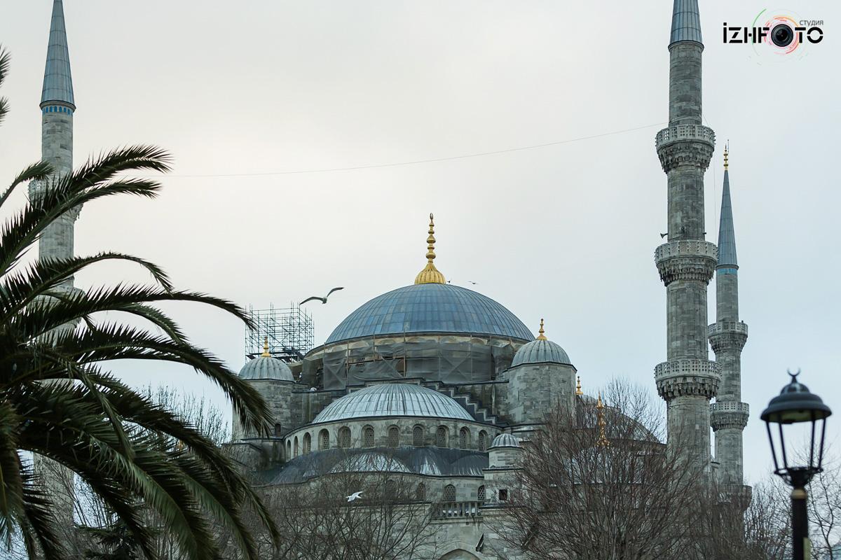 Фото с прогулок по Стамбулу