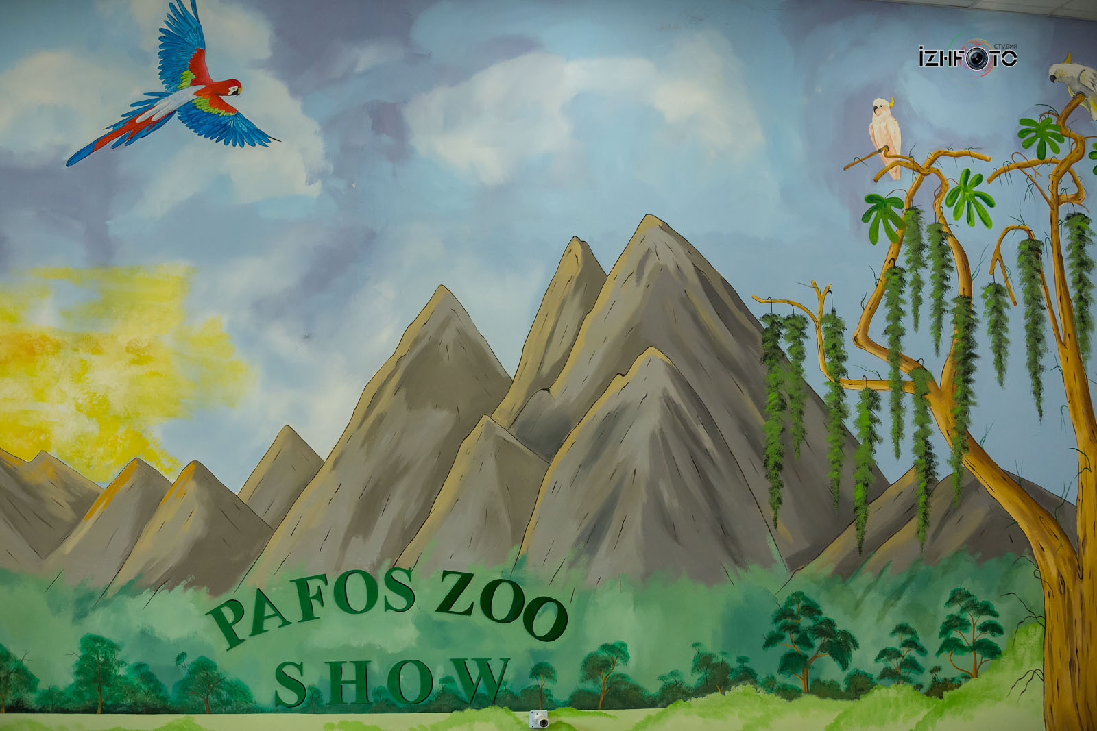 Pafos Zoo Show