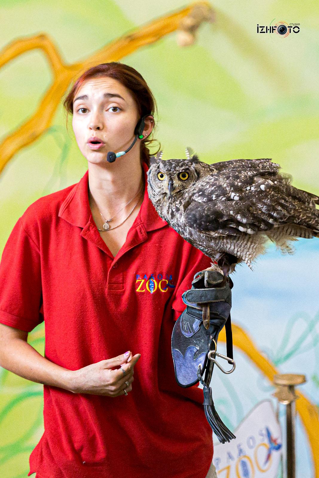 Фото из зоопарка на Кипре