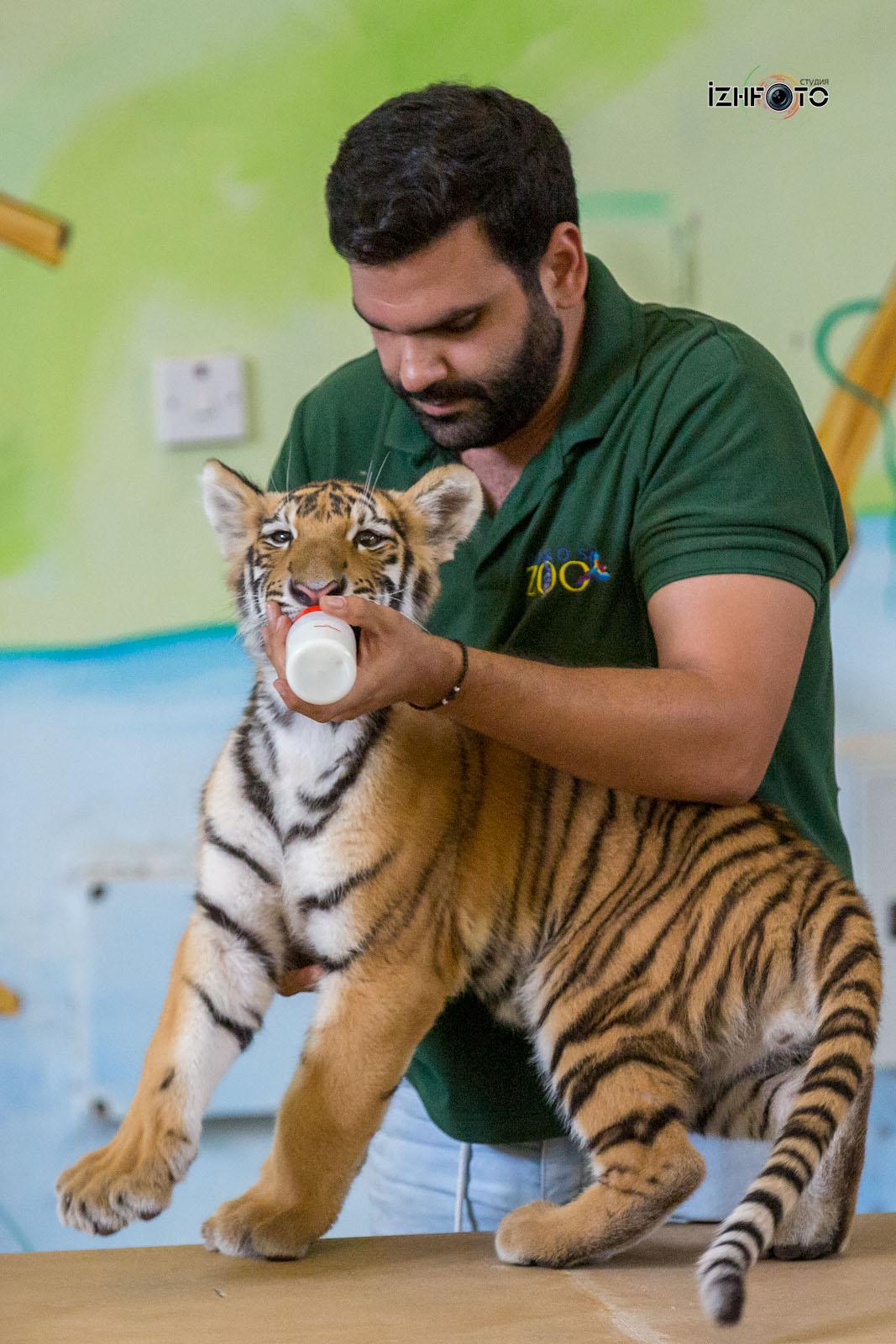 Фото обитателей зоопарка в Пафосе