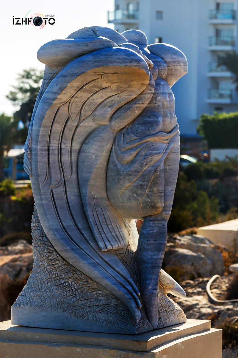 Фотографии Парка скульптур Айя напа