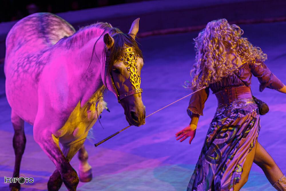 Эльфория Свобода лошадей
