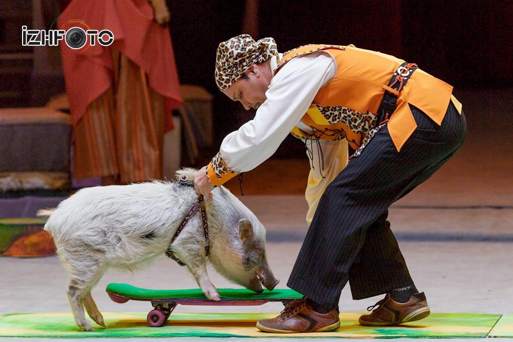 Золушка – новогоднее цирковое представление