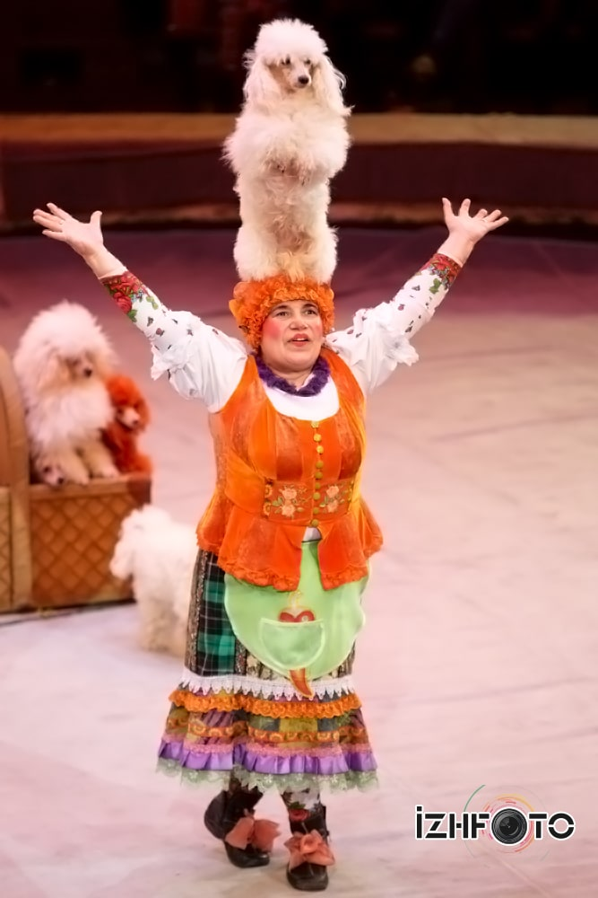 Цирковой спектакль по мотивам сказки Золушка
