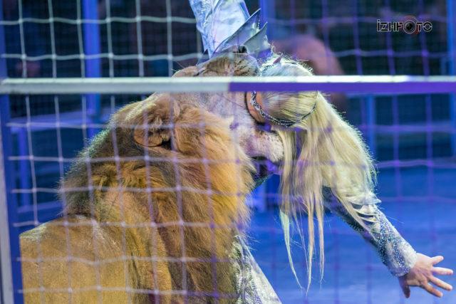 Фотографии львов в цирке