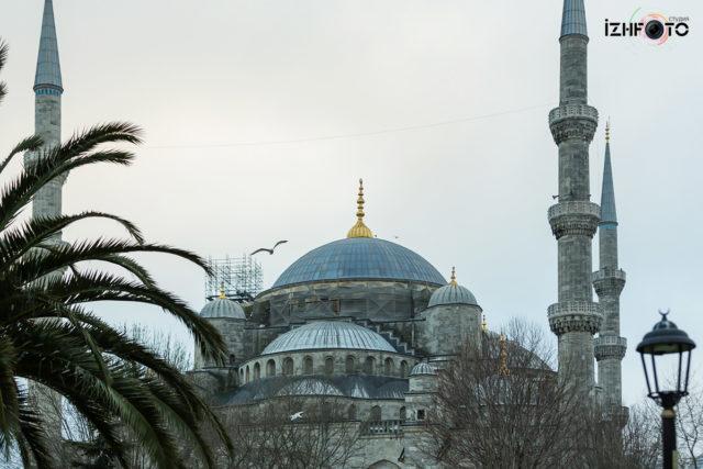 Голубая мечеть Стамбул Фото